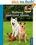 Haltung mehrerer Hunde: Martin R�tter...