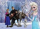 Disney Princess Elsa Anna 500 Piece Jigsaw Puzzle (Fz-002)