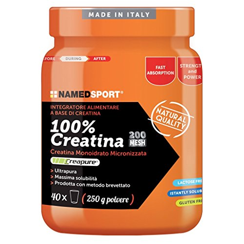 NAMED CREATINA 250 GR