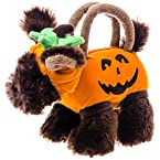 Olly and Friends Pumpkin Purse