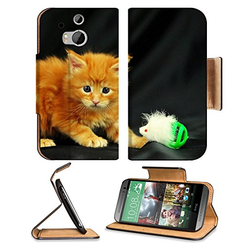 Kitty Little Playful Toy Photo Shoot Htc One M8 Flip Case Stand Magnetic Cover Open Ports Customized Made To Order Support Ready Premium Deluxe Pu Leather 6 4/16 Inch (158Mm) X 3 4/16 Inch (82Mm) X 9/16 Inch (14Mm) Liil Htc1 Cover Professional M 8 Cases M front-38139