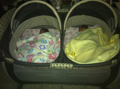 New Graco Pack N Play With Twins Bassinet Vance Baby