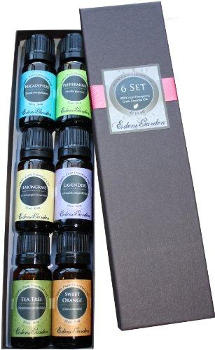 Top 6 100% Pure Therapeutic Grade Basic Sampler Essential Oil Gift Set- 6/10 ml (Eucalyptus, Lavender, Lemongrass, Orange, Peppermint, Tea Tree)