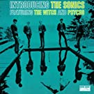 Introducing The Sonics [Us Import]