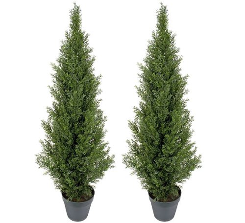 two pre potted 4 artificial cedar topiary outdoor indoor tree home decor. Black Bedroom Furniture Sets. Home Design Ideas