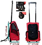 Roll Along Carrier & Backpack ON WHEELS