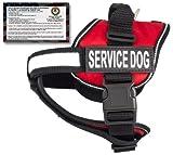 "Service Dog Vest + 50 FREE ADA Info Cards Kit (Service Dog Vest, Medium (22""-30""))  in Red"