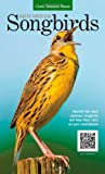 img - for North American Songbirds: Identify the most common songbirds and hear their calls on your smartphone (Backyard Birding) book / textbook / text book
