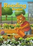 img - for Reading Street Common Core Grade 2.3 Tennessee (TE) by Peter Afflerbach Camille Blachowicz Candy Dawson Boyd Elena Izquiredo Edward Kame'enui (2013-01-01) Spiral-bound book / textbook / text book