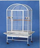Large Dome-Top Wrought Iron Parrot Bird Cage 28x20x60H *White Vein*
