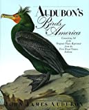 Audubons Birds of America: The Royal Octavo Edition