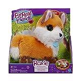 Hasbro B1995 - juguetes de peluche (Toy fox, Marrón, Color blanco, 4 Año(s), AA)