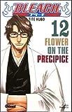 echange, troc Tite Kubo - Bleach, Tome 12 : Flower on the Precipice