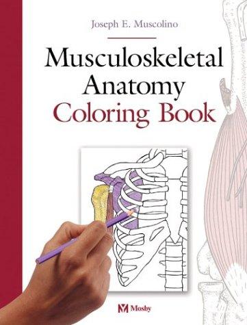Ebook U356Ebook Ebook Download Musculoskeletal Anatomy