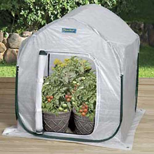 Flower House FHPH130 PlantHouse 3 Pop-Up Plant House (Green House With Heater compare prices)
