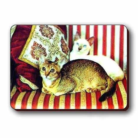 Cheap Lantor 3D Lenticular Products 3D Lenticular Magnet – CatS ON COUCH (B000M12IFM)