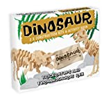 Dinosaur Construction Kit and Activity Book Pack Triceratop and T-Rex