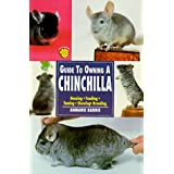 Guide to Owning a Chinchillaby Anmarie Barrie