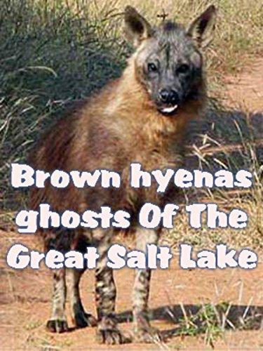 Brown hyenas ghosts Of The Great Salt Lake