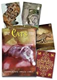 Cats Inspirational Oracle Cards (0738738808) by Moore, Barbara
