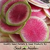 """400 Seeds, Radish """"Watermelon"""" (Raphanus sativus) Seeds By Seed Needs"""