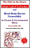 img - for The Hole in the Heart, Which 1 Out of 3 of Us Has: And Blood-Brain Barrier Permeability in Chronic & Environmental Illness book / textbook / text book