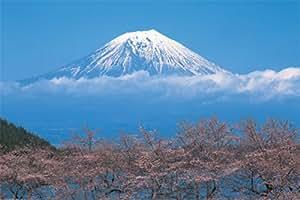 ポスター 富士山/桜 TX-1831