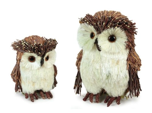 In the Birches Bristled Woodland Owl Family Set of 2 Winter Table Top Decor by Melrose