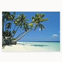 Vinyl Tropical Beach Backdrop Banner from Fun Express