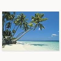 Vinyl Tropical Beach Backdrop Banner from Fun Express