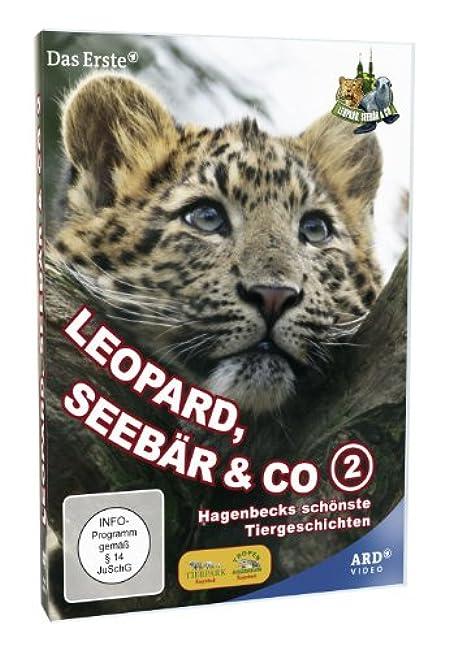 leopard seebär und co