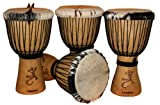 Djembé Art - fine drums - the original, standard class Djembe DE1-Gecko, large - African drum
