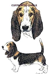 Basset Hound - Double Image by Cindy Farmer