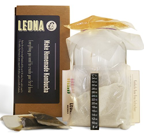 Kombucha Starter Kit - Scoby, Organic Tea, One Gallon Jar, and Everything You Need to Ferment Your First Home Brew. Best Unique Christmas Gift Ideas For Women, Men, Her or Him (Kombucha Tea Starter Kit compare prices)