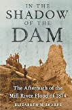 In the Shadow of the Dam: The Aftermath of the Mill River Flood of 1874