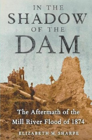 In the Shadow of the Dam: The Aftermath of the Mill River Flood of 1874 PDF