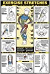 AWW NFC11-L Exercise Stretches Laminated Fitness Poster