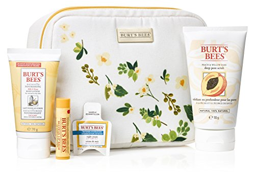burts-bees-bag-of-treats-4-piece-gift-set