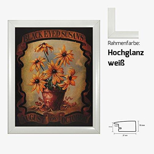 Kunstdruck Black Eayed Susans August do October Sonnenblumen in Vase gemalt 40 x 50 cm mit MDF-Bilderrahmen Pisa & Acrylglas reflexfrei, viele Farben zur Auswahl, hier Hochglanz weiß