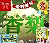 【送料無料】産直☆幻 香梨 ☆ \地域最安値/ ランキングお取り寄せ