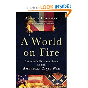 A World on Fire - Amanda Foreman