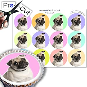 Ready Made Cake Decorations Uk : 12xPRE-CUT Pug Dog Birthday Cupcake Cake Toppers ...