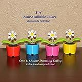 Solar Dancing Flower - Daisy (In Bubble Package)