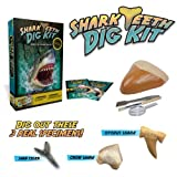 Shark Teeth Digging Kit - Excavate 3 Reak Shark Teeth Specimensby Discover with Dr. Cool