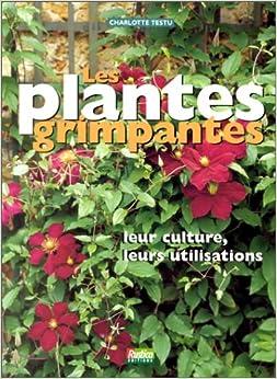 Les plantes grimpantes 9782840381662 books for Plantes grimpantes