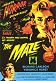 The Maze (El Laberinto) [DVD]