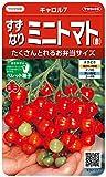 サカタのタネ 実咲野菜0101 すずなりミニトマト(赤) キャロル7 00920101