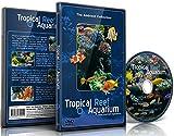 Aquarium DVD - Tropisches Riff Aquarium - Gefilmt in HD - mit nat�rlichen Kl�ngen und entspannender Musik