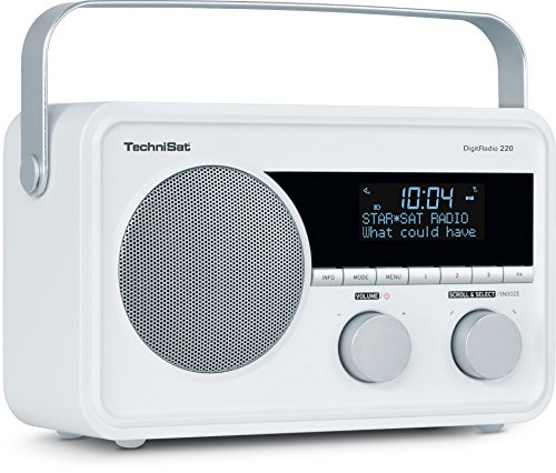 MEDION LIFE E66320 (MD 43000) DAB+ Radio (DAB+, UKW, 20 Senderspeicher, 1 Watt RMS) schwarz