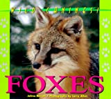 Wild Canines of North America - Foxes